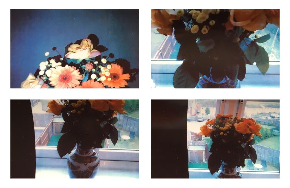 4 flowers.jpg